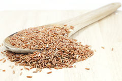 Uncooked Thai brown rice in ladle  rice Healthy Food Stock Photography
