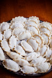 Uncooked Ukrainian varenyky or perogies Royalty Free Stock Photography