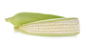 Uncooked white corn with leaf on white. Background Royalty Free Stock Photo