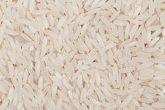 Uncooked white rice Stock Photography