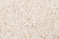 Uncooked white rice Royalty Free Stock Photography