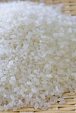 Uncooked white rice Stock Images