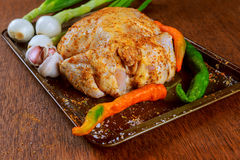 Uncooked whole chicken in baking form with chopped vegetables Royalty Free Stock Images