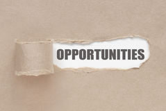 Uncovering opportunities Stock Photo