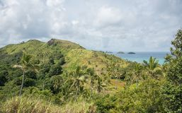 Uncultivated Island Landscape. Uncultivated tropical mountain landscape with coconut palm trees overlooking the Pacific Ocean seascape under a cloudy sky on Stock Photo