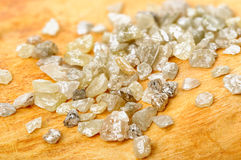 Uncut diamonds on birch Stock Images