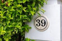 39 und eine Hecke Lizenzfreie Stockbilder