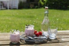 Und Limonade del mit Erdbeerjoghurt de Picknick Foto de archivo libre de regalías