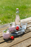 Und Limonade del mit Erdbeerjoghurt de Picknick Imagen de archivo libre de regalías