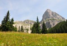 Und Sparafeld de Admonter Kalbling, Áustria Fotografia de Stock
