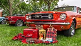 1966 und zwei andere Mustangs Lizenzfreies Stockfoto