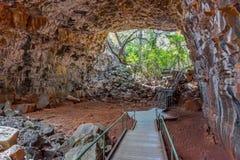 Undara Vulkanisch Nationaal Park - lavabuizen stock foto