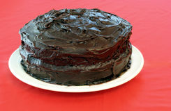 Undecorated Schokoladen-Kuchen Stockfoto