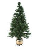 Undecorated Weihnachtsbaum Lizenzfreies Stockfoto