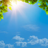 Under the blue skies. Royalty Free Stock Images