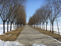 Under the blue sky, a road leading to a distant. Stock Photo