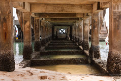 Under the Bridge. Pillars under the bridge, a jetty into the water Stock Image