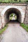 Under-bro med vägen och träd på bakgrunden Royaltyfri Bild