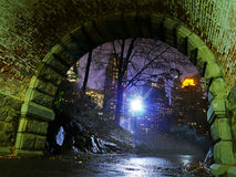 Under bron - Central Park i Misty Winter, New York City Royaltyfri Foto