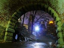 Under bron - Central Park i Misty Winter, New York City Royaltyfri Foto