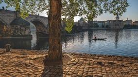 Under Charles Bridge Royaltyfri Foto