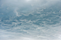Under clouds in the sky before the storm Stock Image