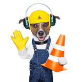 Under construction dog Royalty Free Stock Image