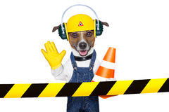 Under construction dog Stock Photos