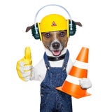 Under construction dog Stock Image