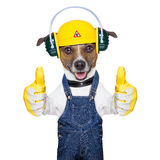Under construction dog Royalty Free Stock Photo
