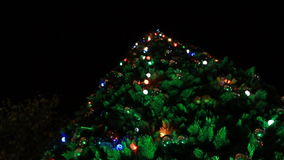 Under cristmas tree stock video footage