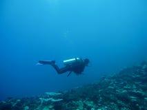 Under the deep blue sea Stock Photo