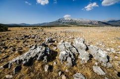 Under Dinara mountain Stock Photo