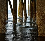 Under the Docks. Low tide at Edmonds Beach in Washington state, allows access under the docks Stock Photography