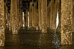 Under the Docks Stock Image