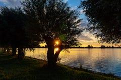Under härlig solnedgång i sjöZoetermeerse plas skiner solen till och med filialerna av en pil arkivfoto