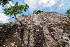 Under looking view cliff Royalty Free Stock Photo