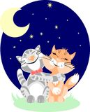 Under Major Ursa. Romantic cats embrace under Major Ursa constellation Royalty Free Stock Images