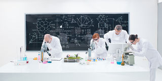 Under microscope lab analysis Royalty Free Stock Images