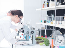 Under microscope lab analysis Stock Images