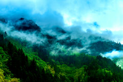 Under the misty mountains Stock Image