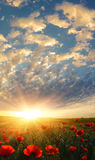 Under morning heaven Stock Photo