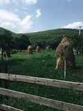 Under the mountain haystack Royalty Free Stock Photography