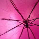 Under my umbrella! Stock Images