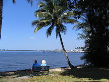 Under A Palm Tree. An elderly couple sitting looking at the ocean under a palm tree Stock Photo