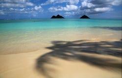Under palm tree on Lanikai Beach Royalty Free Stock Image