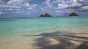 Under palm tree. Tropical Lanikai Beach on Pacific Ocean - Oahu, Hawaii stock video