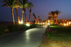 Under palm trees at night. Walk side in Sharm el Sheikh - Egypt Stock Photos
