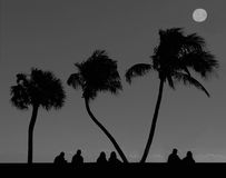 Under The Palm Trees, Silhouette. Silhouette of people sitting under the palm trees and enjoying an ocean view in Deerfield, Florida Royalty Free Stock Photo