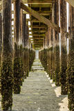 Under A Pier Royalty Free Stock Photography